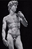 Italian Renaissance - David - Sculpture by Michelangelo