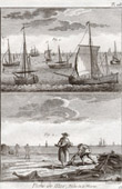 Fishing - Fishing Boat - Cod - 1793 - Plate 108 - Collection of the Diderot's Encyclop�die