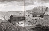 Fishing - Cod Fishing - 1793 - IN-FOLIO - Plate 114 - Collection of the Diderot's Encyclop�die