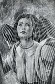 Angel - The Coronation of the Virgin Mary (Sandro Botticelli)