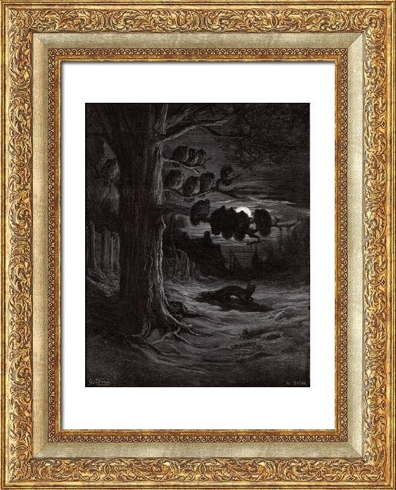 Gravures Anciennes & Dessins   Fables de La Fontaine - Le Renard et les Poulets d'Inde (Gustave Doré)   Gravure sur bois   1868