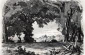View of Castel Gandolfo - Villa Doria - Lazio (Italy)