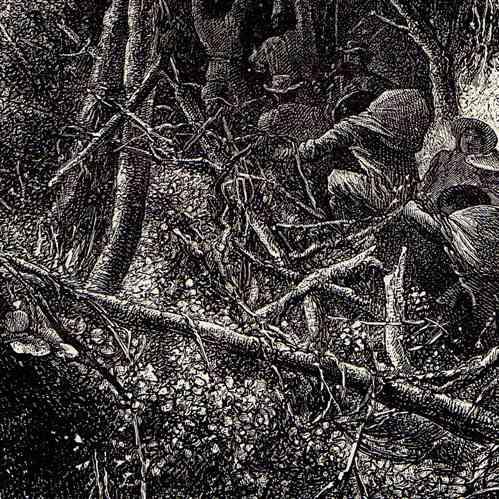 gravures anciennes selva for t tropicale humide am rique du sud gravure sur bois 1882. Black Bedroom Furniture Sets. Home Design Ideas