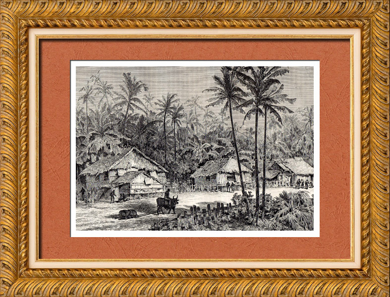 Antique Prints & Drawings | Malaysia (Asia) - Dwellings of Negritos - Indigenous people - Nomads - Hunters | Wood engraving | 1882