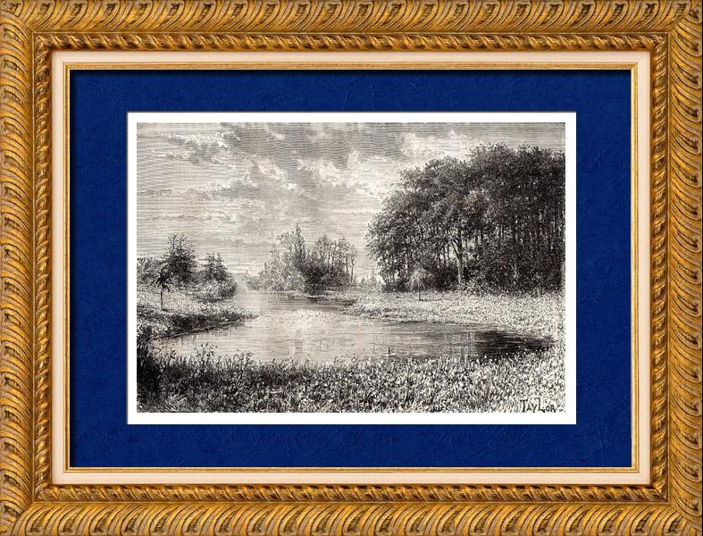Gravures Anciennes & Dessins   La Source du Loiret - Le Bouillon (France)   Gravure sur bois   1881