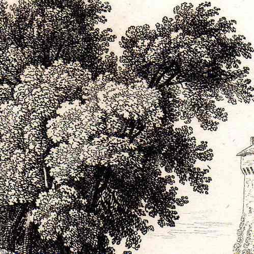 Stampe antiche monumenti storici di francia castello for Piani di piantagione storici