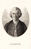 Portrait of Daubenton (1716-1799)