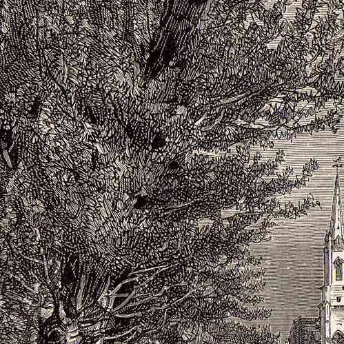 stampe antiche veduta di niort deux s vres francia incisione xilografica 1881. Black Bedroom Furniture Sets. Home Design Ideas