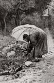 Monje que recoge rábanos (Jean-Georges Vibert)