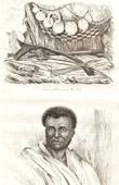 Fiji öarna - Vitiöarna - Vapen och Prydnadar - Vanuatu - Invånare av Malekula