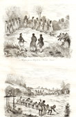 New Zealand - - Explorer - Reception of Europeans by a Chief - Clearing of a Field of Koumara