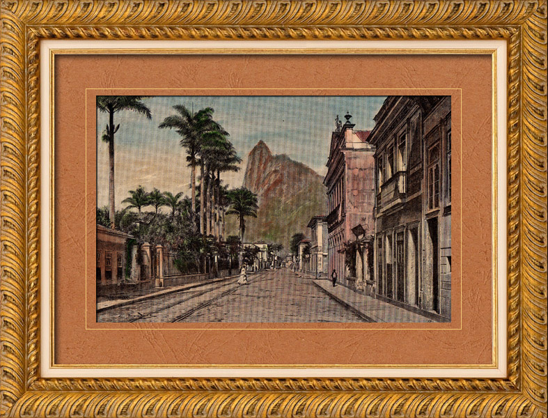 Stampe Antiche & Disegni   Veduta di Rio de Janeiro (Brasile) - Orto botanico - Giardino botanico   Incisione xilografica   1892