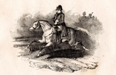 History of Napoleon Bonaparte - Portrait of Napoleon I of France as Emperor on Horseback (1815)