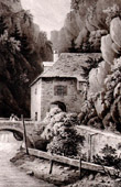 Landscape of Chartreuse near Fourvoirie - Is�re (France)