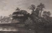 View of Rosetta (Egypt)