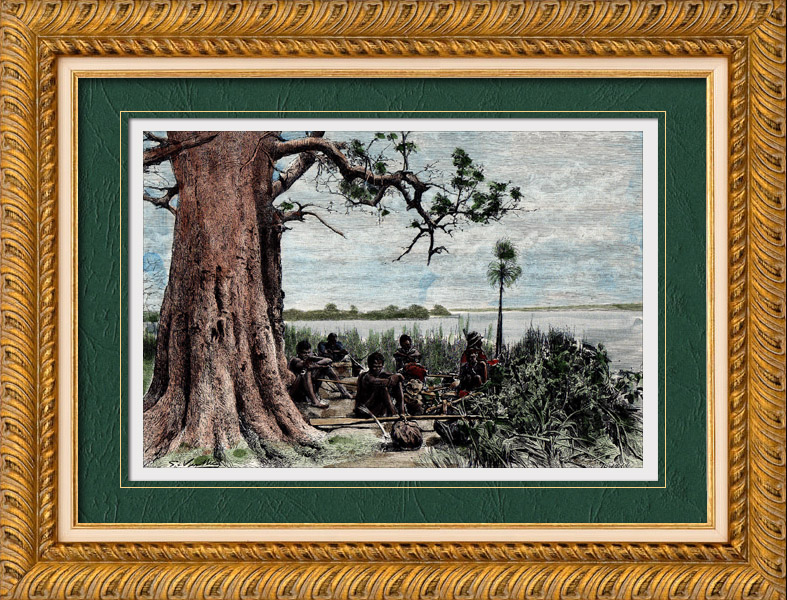 Gravures Anciennes & Dessins   Vue du Zambèze au confluent du Tchobé - Fleuve (Afrique  du Sud)   Gravure sur bois   1888