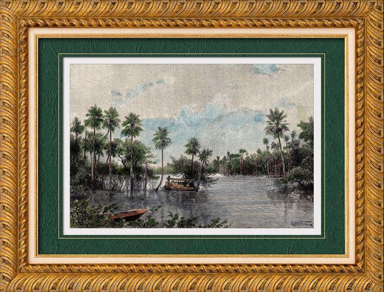 Gravures Anciennes & Dessins | Vue du Río Pilcomayo (Argentine - Amérique du Sud) | Gravure sur bois | 1894