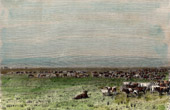 View of Pampas (Argentina) -  Herd of cattle