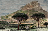 Lion's Head (South Africa) - Cape Town - Table Mountain