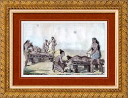 Indiens d'Amérique - Médecine - Traitement des Maladies (États-Unis d'Amérique)