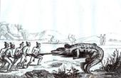 American Indians - Alligator - Crocodile Hunt (United States of America)