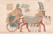 Ancient Egypt - King in his Chariot - Pharaoh (Egypt)
