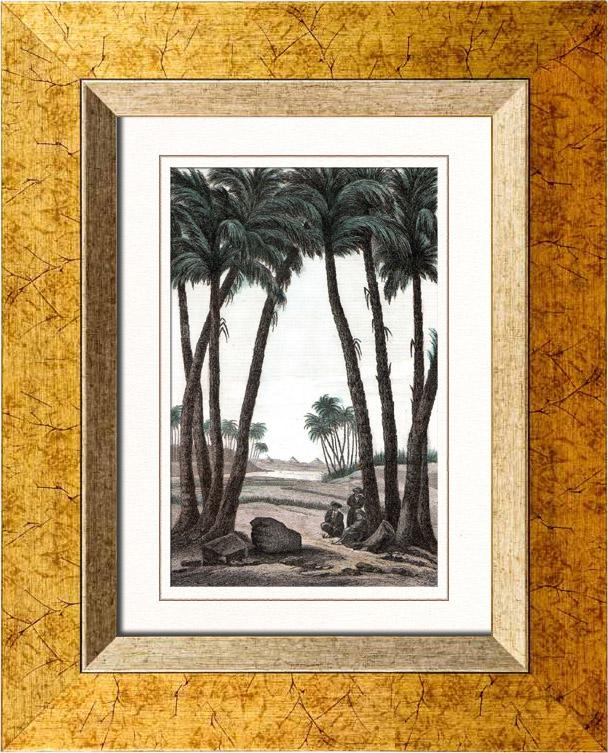Gravures Anciennes & Dessins | Vue de Memphis - Vestiges (Egypte) | Taille-douce | 1848