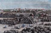 View of Bombay - Mumbai (India) - Market - Cotton