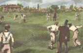 Cricket (England)
