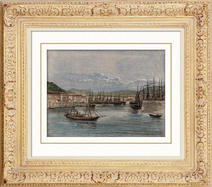 Gravures Anciennes & Dessins   Vue du Port de Nice (Provence-Alpes-Côte d'Azur - France)    Gravure   1885