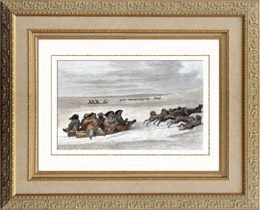 Eskimo - Schlitten - Schlidde (Zirkumpolare)