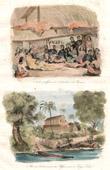 Tonga Inseln - Offiziere des Astrolabe an Tamaha - Missionare in Tonga Tabu - Tongatapu