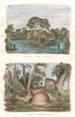 Antique print - Australia - River - Murray - Darling - Grave of a Indigenous - Indigenous Australians