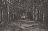 Antique print - View of Aranjuez - Calle de la Reina (Spain)
