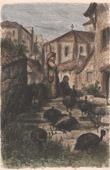 A Pavera - Guard - Turkeys - Countryside of Salamanca (Spain)