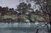 Bakhoy Flodstrand - Senegal Flod (V�stafrika) - Moka�a Far