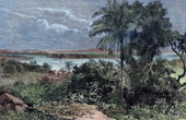 Antique print - Confluence of Niger River and Benue River - West Africa