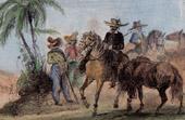 Allevatori di Cavalli - Maquignons Paulistes (Brasile)