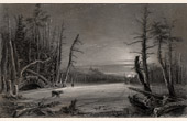 Winter Landscape - Appalachian Mountains (New York - United States of America)