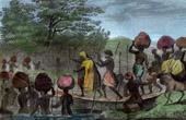 Expedition of Ren� Cailli� - Caravan in Masina - Kinshasa (Zaire - Congo)