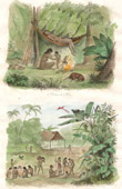 Log cabin of Puris - Indians - Coroados Tribe - Aldea (Brazil)