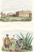 View of Chapingo - School of Agriculture - Hacienda - Manufacturing of Pulque - Agave (Mexico)