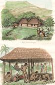 Bauernhaus bei Orinoco - Bergland von Guayana - Amarizanos Indianer - Venezuela (S�damerika)