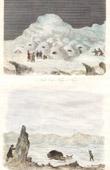 Stich von Eskimo - Moschusochse Jagd - Bisamochse - Schafsochse (Zirkumpolare)