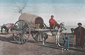 Chariot - Mode of transport - Bukhara - Central Asia - Uzbekistan (Tartary)