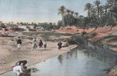 Stich von Wadi Gabès (Tunesien)