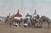 North Africa - Camelcade - Camels - Costume