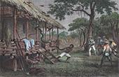 Strid mot en J�tte Orm i Ambo - Moluckerna (Indonesien)