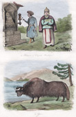 Tibet - Tibetaner - Kapelle - Buddha - Yak - Jak - Wiederkäuer