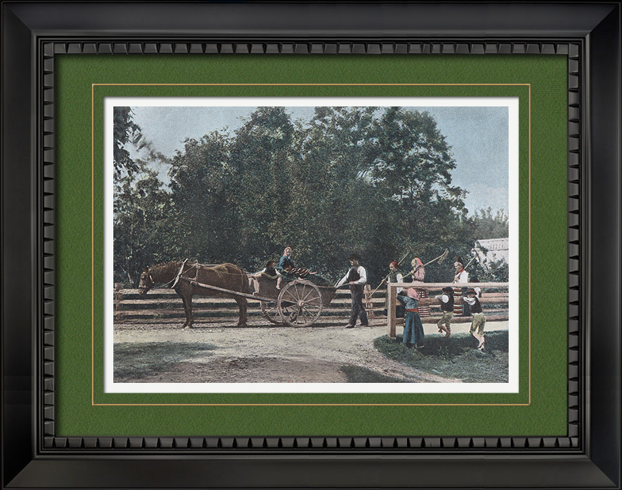 Antique Prints & Drawings | Agriculture in Dalarna - After Harvest - Farmings - Historical province (Sweden) | Photochrom print | 1890